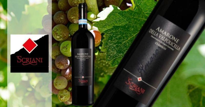 AZIENDA AGRICOLA SCRIANI - OFFER BEST AMARONE WINE DELLA VALPOLICELLA DOCG CLASSIC 2009